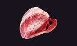 Сердце черного ангуса (Black Angus Heart)